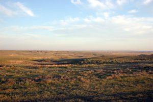 D3 prairie